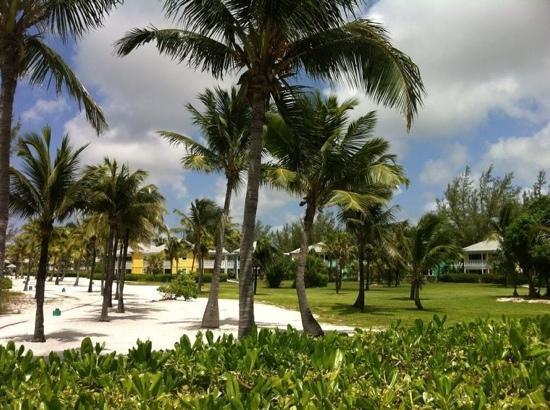 Club Med Columbus Isle: de la chambre au restaurant