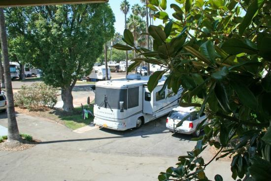 San Diego RV Resort : Park Grounds