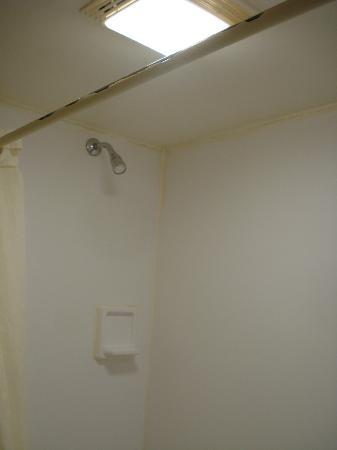 Econo Lodge & Suites : Disgusting shower stall.