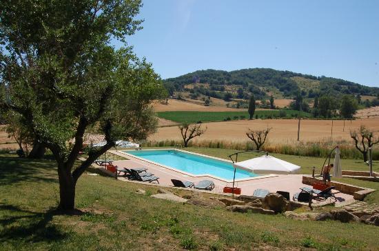 Borgo Belvederi: Vue sur la piscine