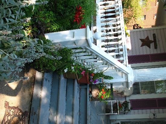 Belle Hearth Bed and Breakfast: Porch Steps