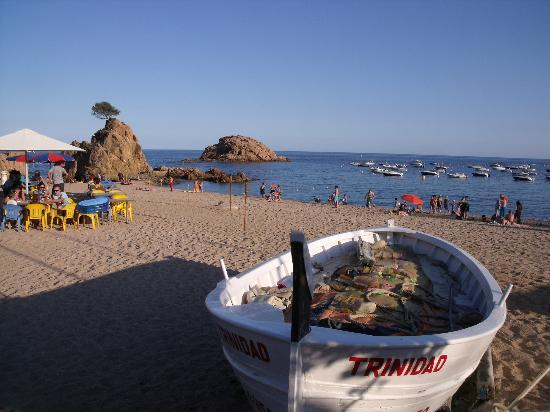 Premier Gran Hotel Reymar & Spa: la plage de la Mar Menuda en face de l'hôtel