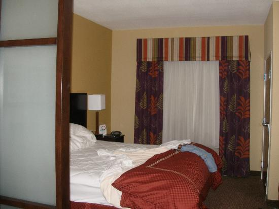 Comfort Suites Pecos: King bed