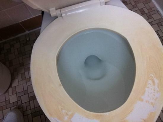 Cabana Motel: Toilet