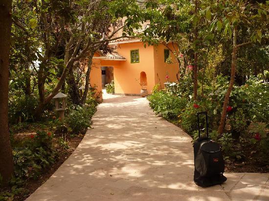 Aranwa Sacred Valley Hotel & Wellness : Hermoso en todos sus alrededores