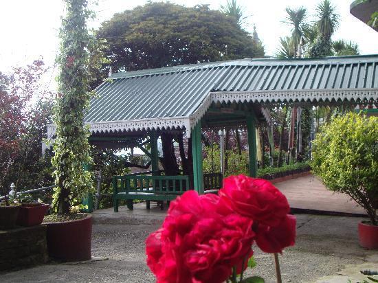 Darjeeling Planters Club: club view