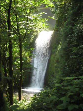 Sea to Summit Tours & Adventures: Waterfalls on Columbia River Gorge tour