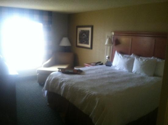 Hampton Inn & Suites Jackson: room 409, one king