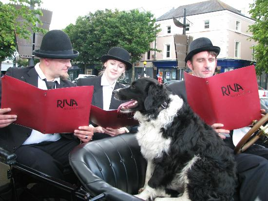 Laurel & Hardy and friends deciding what to have for their lunch at Riva Brasserie Dundalk !
