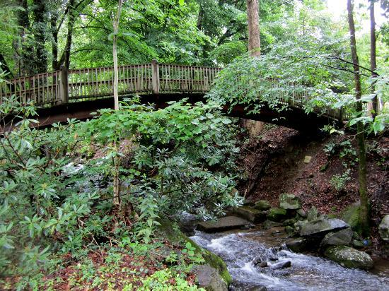 Mynatt Park : Bridge