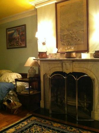Rutland Square House: lovely fire place