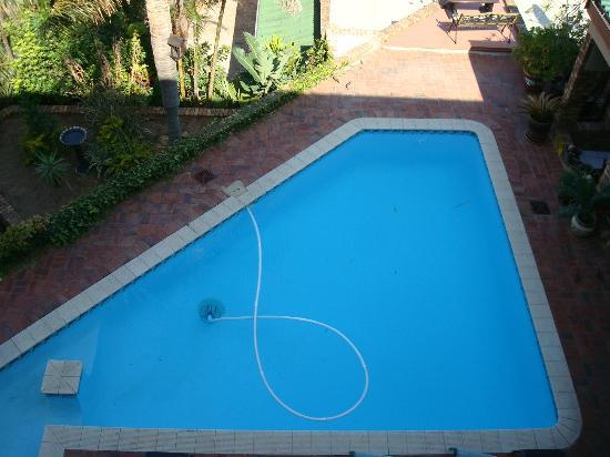 The Albatros Guest House: Pool