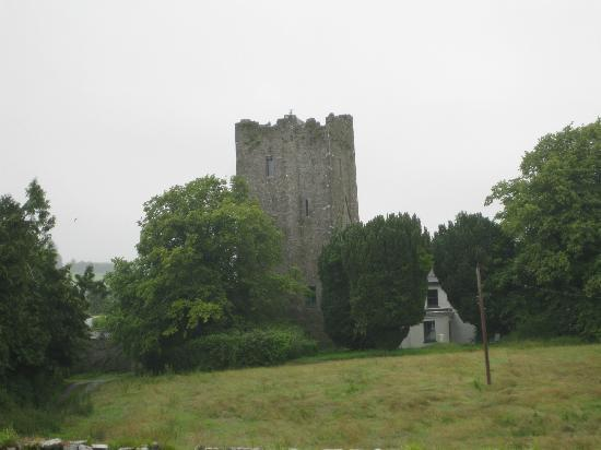 Clomantagh Castle: Grounds