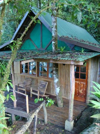 Rio Magnolia Nature Lodge: The Mongo Congo