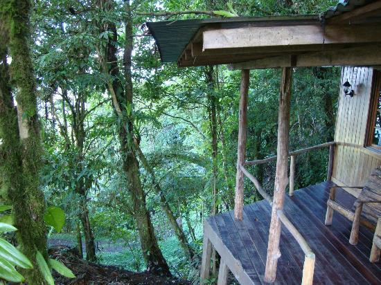 Rio Magnolia Nature Lodge: View to the left of the Mongo Congo