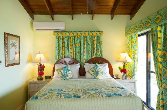 The Mount Nevis Hotel: Superior Suite with King Bed and Full Kitchen
