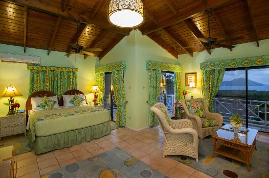 The Mount Nevis Hotel: Superior Suite with a King Bed and Full Kitchen