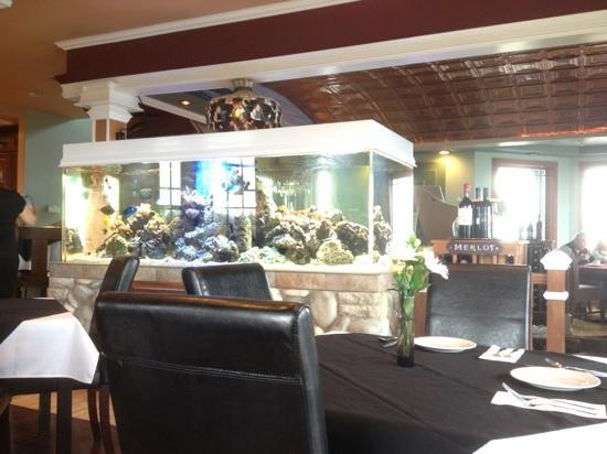 The Collins Inn : salt water Aquarium