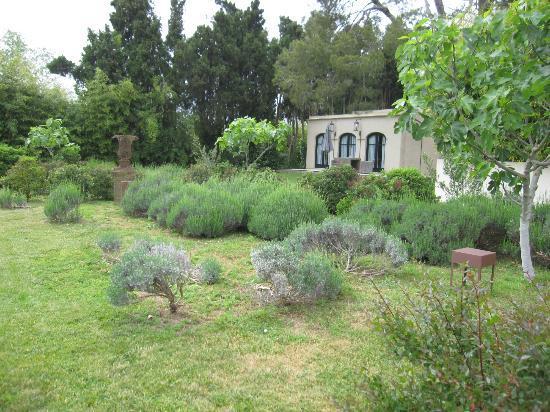 La Malcontenta Hotel: Jardin