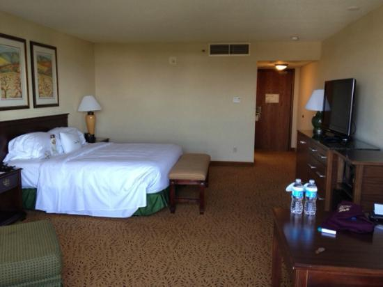 DoubleTree by Hilton San Jose: room