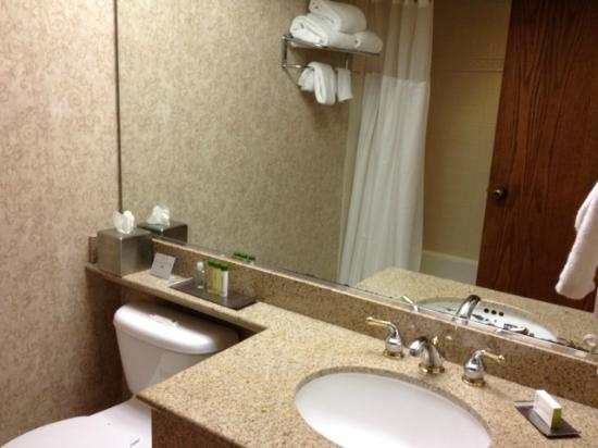 DoubleTree by Hilton San Jose: bathroom