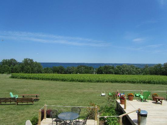Buttonwood Grove Winery Cabins: View