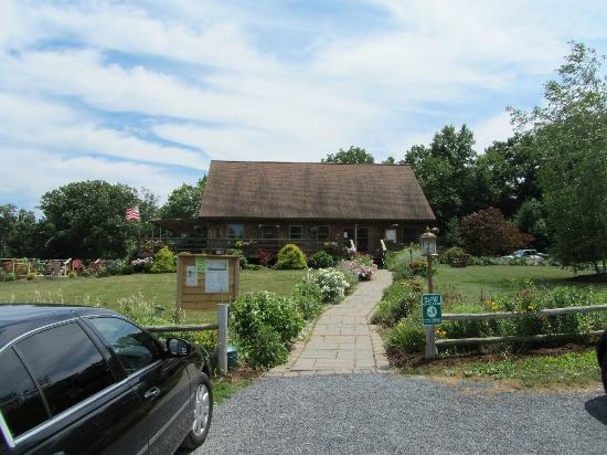 Buttonwood Grove Winery Cabins: Store