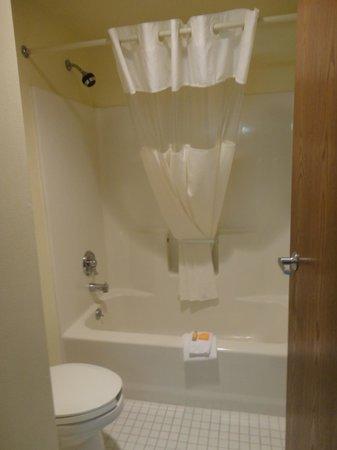 La Quinta Inn & Suites Naples East (I-75): salle de bain