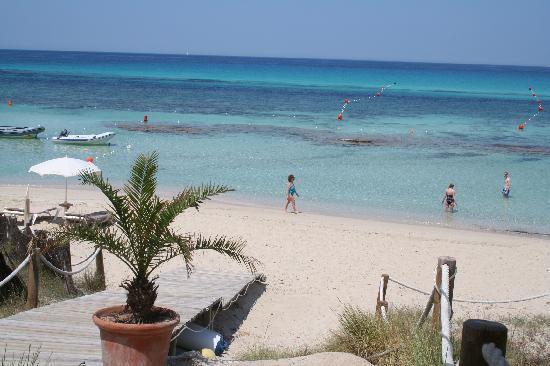 Playa De Ses Illetes Beach Bar