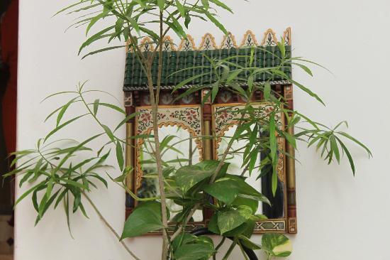 Riad Dar Zampa: jpli miroir du patio