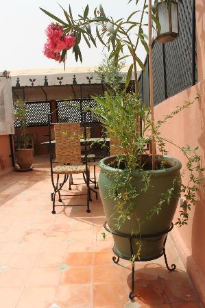 Riad Dar Zampa: terrasse