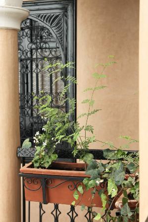 Riad Dar Zampa: belle grille en fer forgé