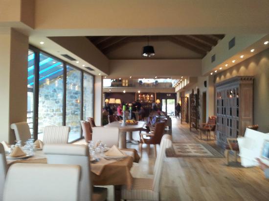 Orizontes Tzoumerkon Hotel Resort: Hotel Café
