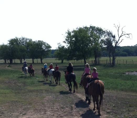 Mayan Dude Ranch: Trail ride daily x2