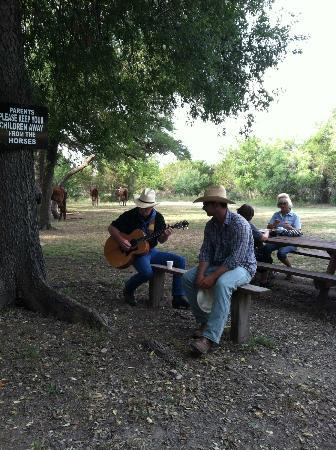 Mayan Dude Ranch: Cowboy serenade
