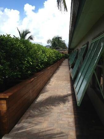 Seashell Suites Resort: View of front entrances to suites