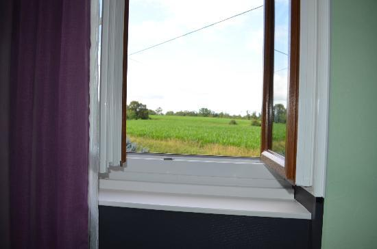 L'Horizon des Landes : View from our room.
