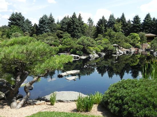Denver Botanic Gardens: garden