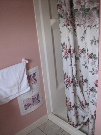 The Bentley Inn: Bathroom needs modernizing. Paper bath mats?