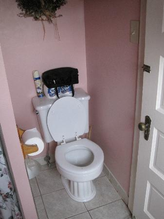 The Bentley Inn: bathroom