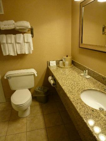 Comfort Inn Grantsville-Deep Creek Lake: Bathroom