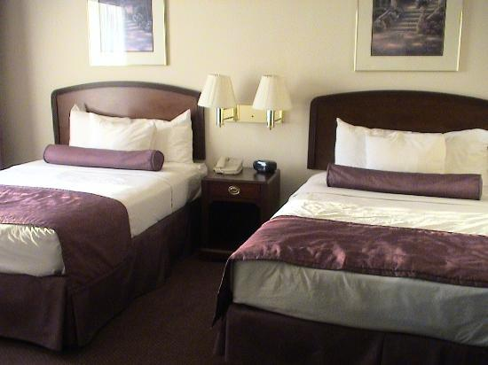 Ashmore Inn & Suites: 2 queen bed room