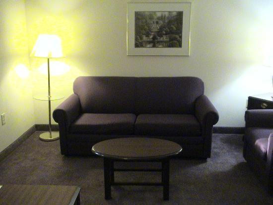 Ashmore Inn & Suites: Sofa in sitting area