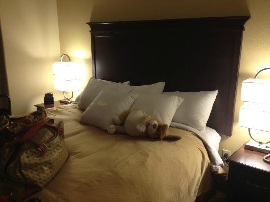 هوموود سويتس باي هيلتون برمنجهام/فيستال: bed
