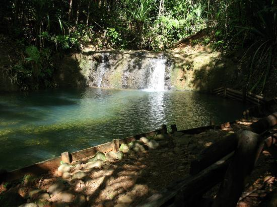 Colo-I-Suva Forest Park: Lower Pool