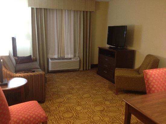 Homewood Suites by Hilton Binghamton/Vestal: tv in living area