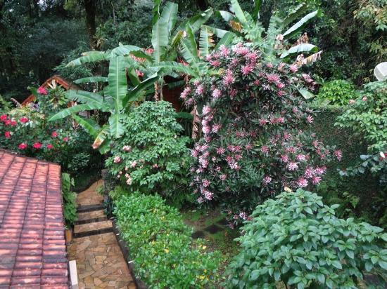Aratinga Inn: Jardim Interno da Pousada