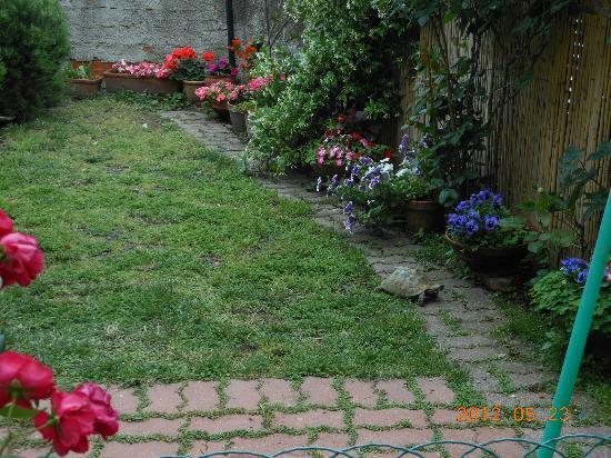 Villino Azzurra: Small, lovely outdoor garden