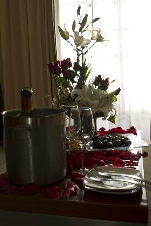 Casa Torres Hotel: El paquete lunamielero.