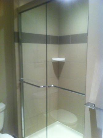 Suites at 118: Shower